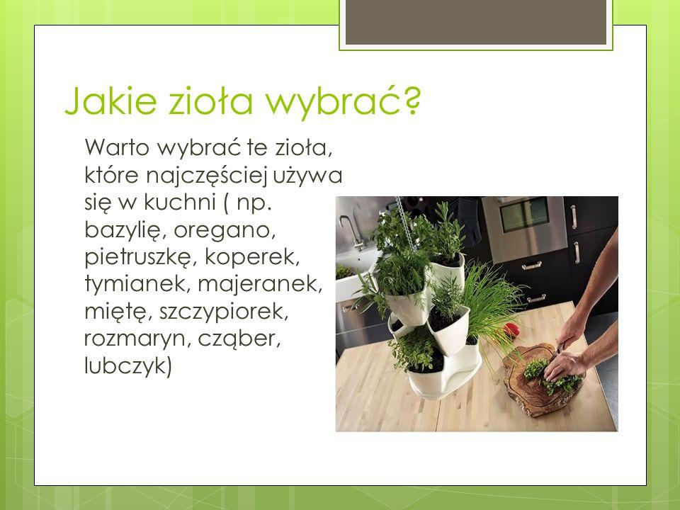 Jakie zioła wybrać? Warto wybrać te zioła, które najczęściej używa się w kuchni ( np. bazylię, oregano, pietruszkę, koperek, tymianek, majeranek, mięt