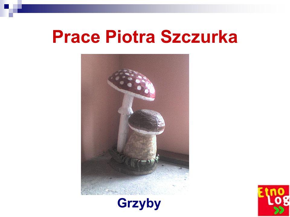 Prace Piotra Szczurka Grzyby