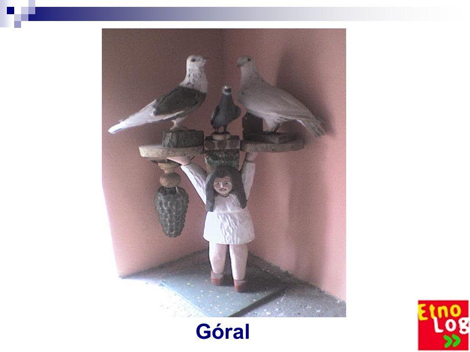 Ptaki Gołębie