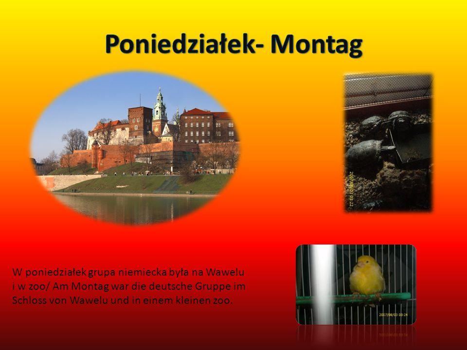 W poniedziałek grupa niemiecka była na Wawelu i w zoo/ Am Montag war die deutsche Gruppe im Schloss von Wawelu und in einem kleinen zoo.