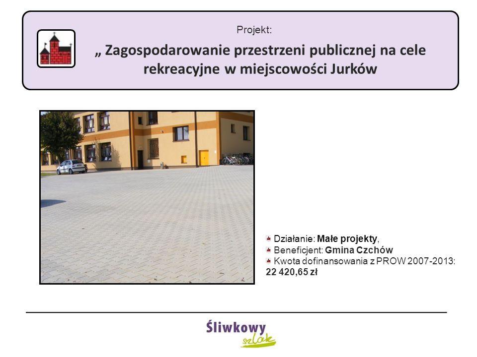 """Projekt: """" Zagospodarowanie przestrzeni publicznej na cele rekreacyjne w miejscowości Jurków Działanie: Małe projekty, Beneficjent: Gmina Czchów Kwota"""
