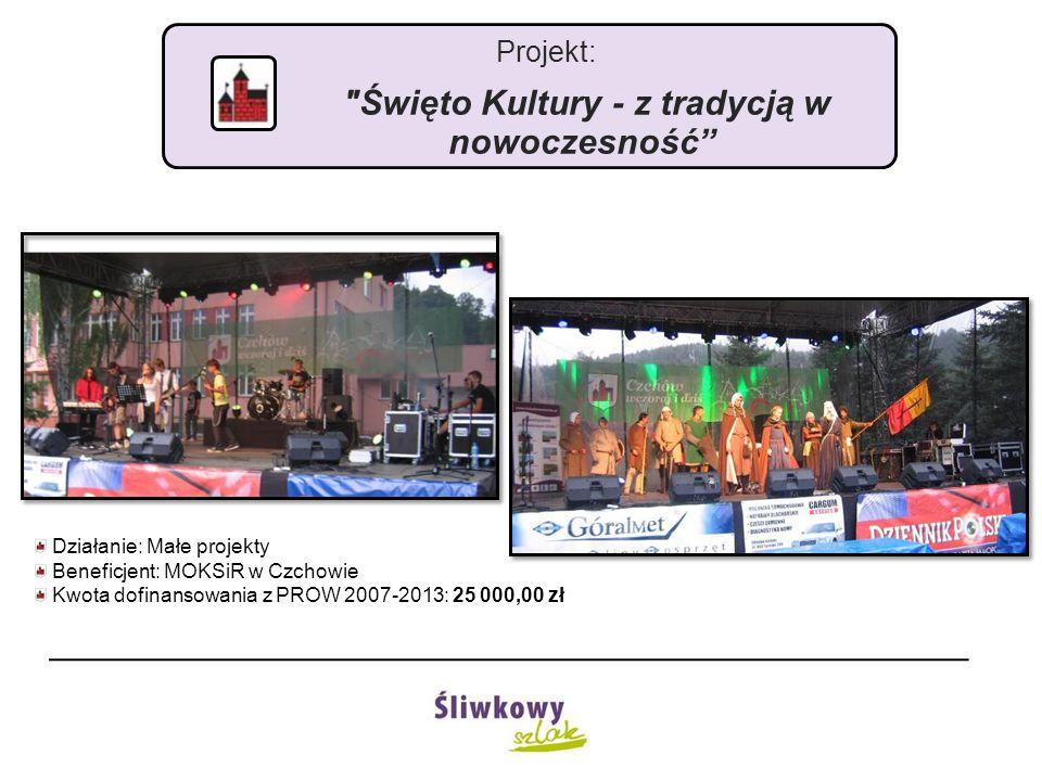 Projekt: Budowa placu zabaw w Domosławicach Działanie: Małe projekty Beneficjent: Gmina Czchów Kwota dofinansowania z PROW 2007-2013: 25 000,00 zł