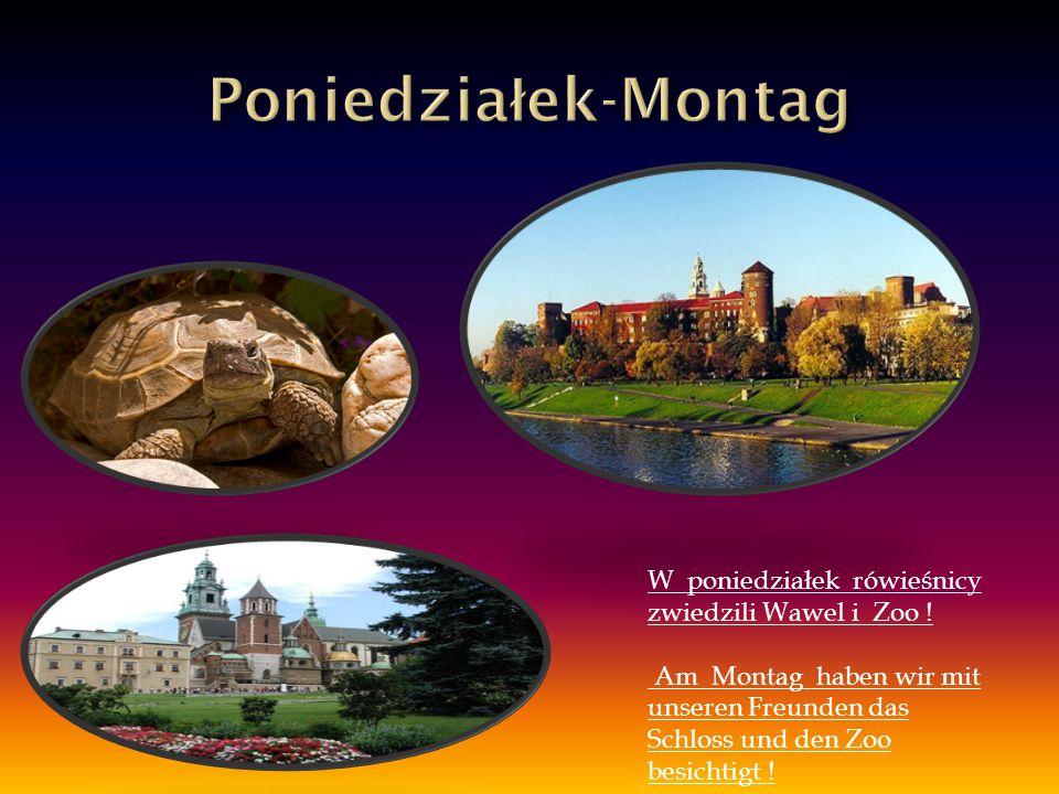W poniedziałek rówieśnicy zwiedzili Wawel i Zoo ! Am Montag haben wir mit unseren Freunden das Schloss und den Zoo besichtigt !