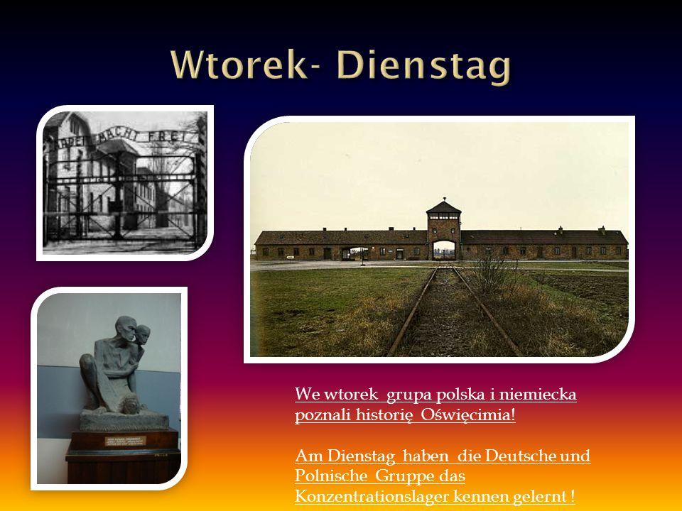 We wtorek grupa polska i niemiecka poznali historię Oświęcimia! Am Dienstag haben die Deutsche und Polnische Gruppe das Konzentrationslager kennen gel