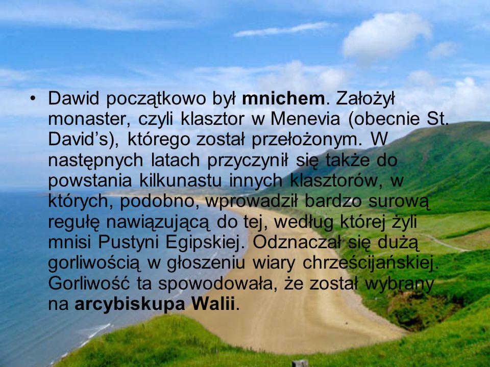 Dawid początkowo był mnichem.Założył monaster, czyli klasztor w Menevia (obecnie St.
