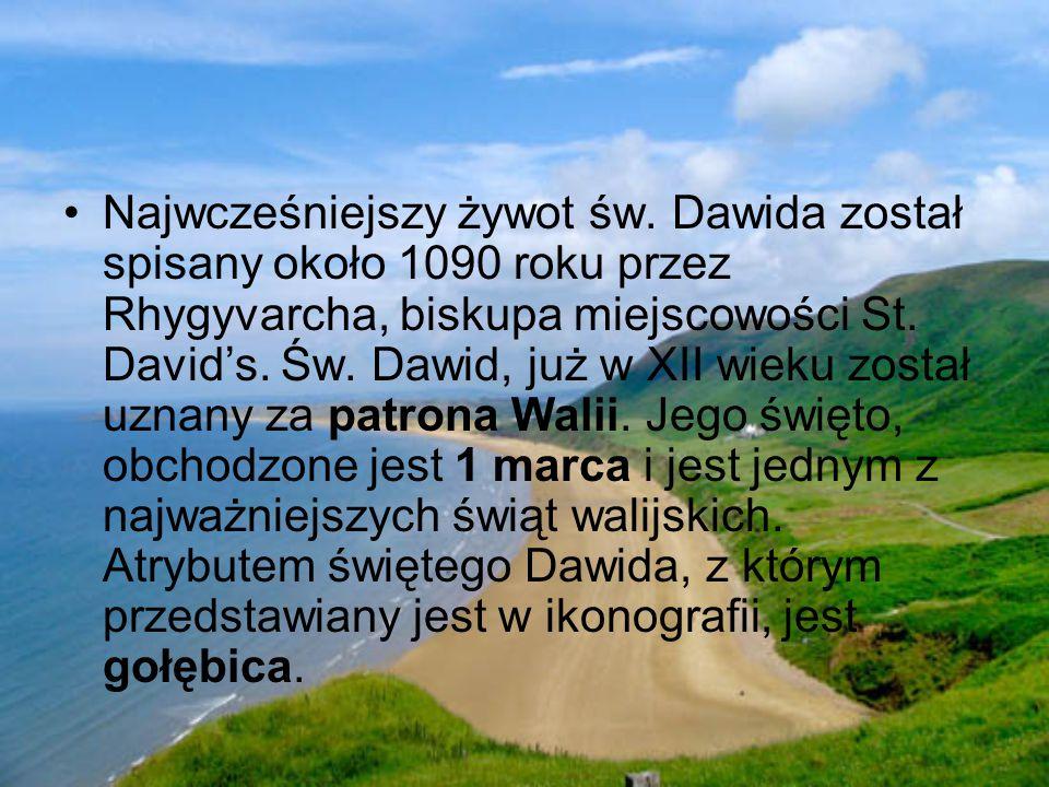 Najwcześniejszy żywot św. Dawida został spisany około 1090 roku przez Rhygyvarcha, biskupa miejscowości St. David's. Św. Dawid, już w XII wieku został