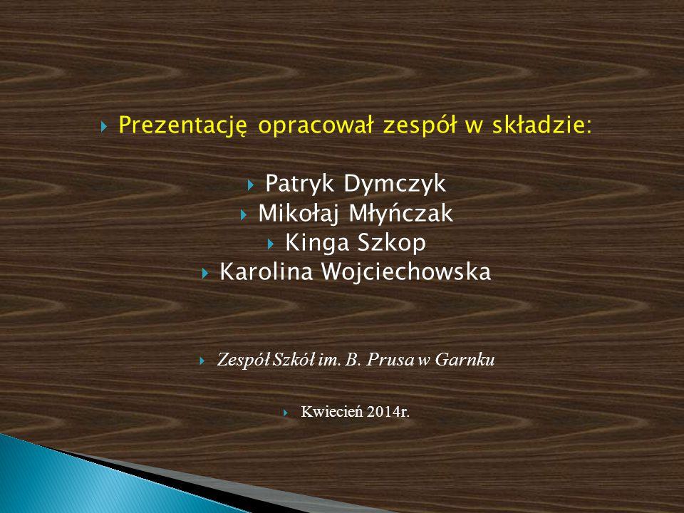  Prezentację opracował zespół w składzie:  Patryk Dymczyk  Mikołaj Młyńczak  Kinga Szkop  Karolina Wojciechowska  Zespół Szkół im. B. Prusa w Ga
