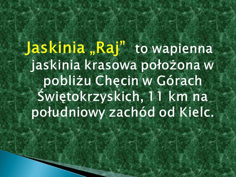 """Jaskinia """"Raj"""" to wapienna jaskinia krasowa położona w pobliżu Chęcin w Górach Świętokrzyskich, 11 km na południowy zachód od Kielc."""