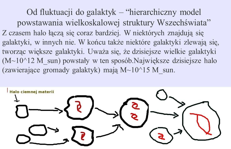 """Od fluktuacji do galaktyk – """"hierarchiczny model powstawania wielkoskalowej struktury Wszechświata"""" Z czasem halo łączą się coraz bardziej. W niektóry"""