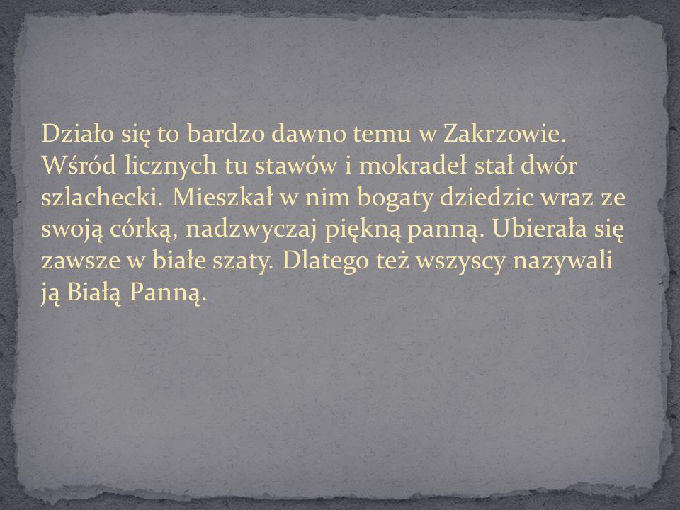 Działo się to bardzo dawno temu w Zakrzowie.
