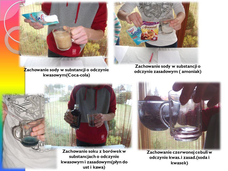 Zachowanie sody w substancji o odczynie zasadowym ( amoniak) Zachowanie sody w substancji o odczynie kwasowym(Coca-cola) Zachowanie soku z borówek w substancjach o odczynie kwasowym i zasadowym(płyn do ust i kawa) Zachowanie czerwonej cebuli w odczynie kwas.