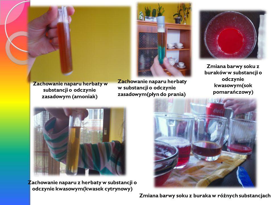 Zachowanie naparu herbaty w substancji o odczynie zasadowym (amoniak) Zmiana barwy soku z buraka w różnych substancjach Zachowanie naparu herbaty w substancji o odczynie zasadowym(płyn do prania) Zachowanie naparu z herbaty w substancji o odczynie kwasowym(kwasek cytrynowy) Zmiana barwy soku z buraków w substancji o odczynie kwasowym(sok pomarańczowy)