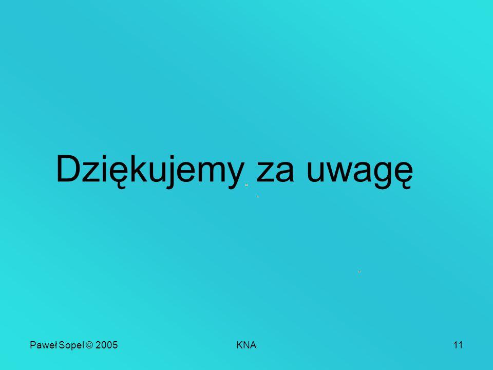Paweł Sopel © 2005KNA11 Dziękujemy za uwagę