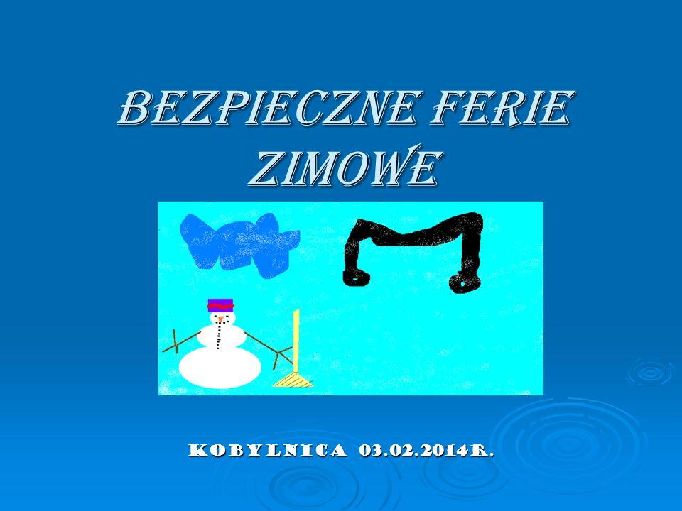 Bezpieczne Ferie zimowe Kobylnica 03.02.2014r.