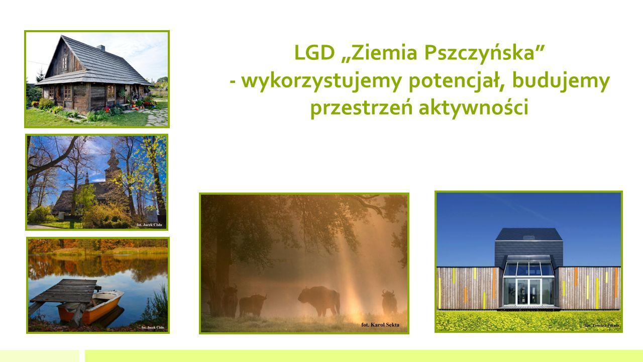 """LGD """"Ziemia Pszczyńska - wykorzystujemy potencjał, budujemy przestrzeń aktywności"""
