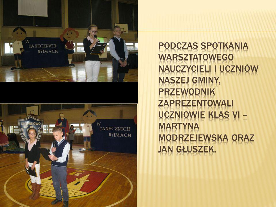 Nasza Szkoła realizuje już czwarty z kolei projekt w ramach programu Comenius.