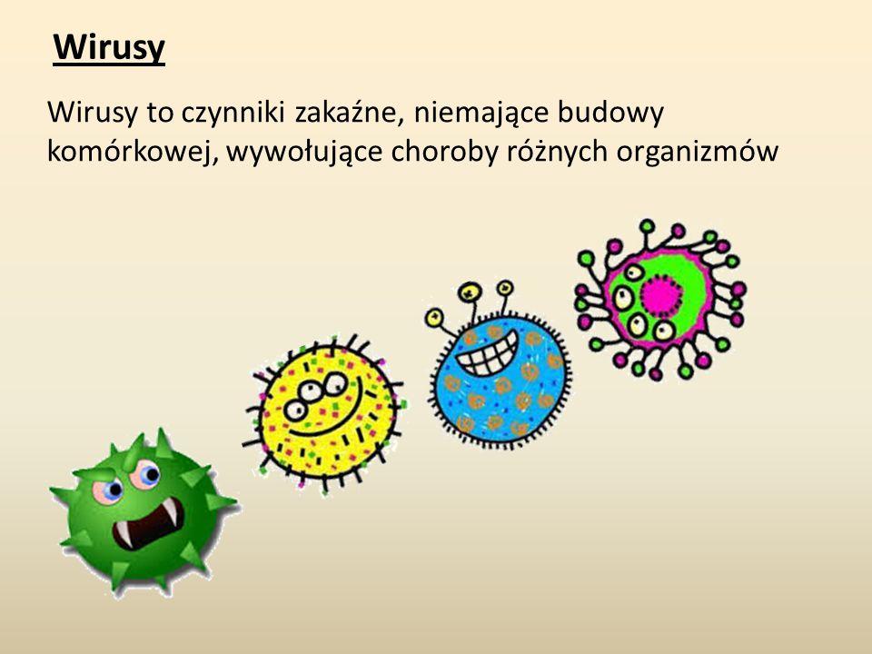 Wirusy Wirusy to czynniki zakaźne, niemające budowy komórkowej, wywołujące choroby różnych organizmów