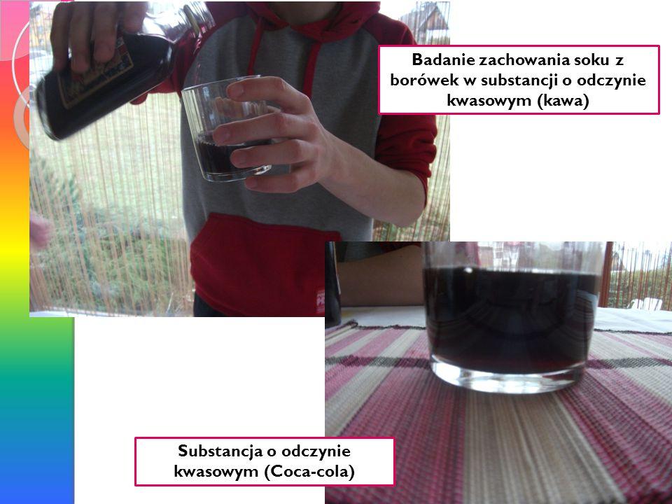 Badanie zachowania soku z borówek w substancji o odczynie zasadowym(płyn do naczyń)