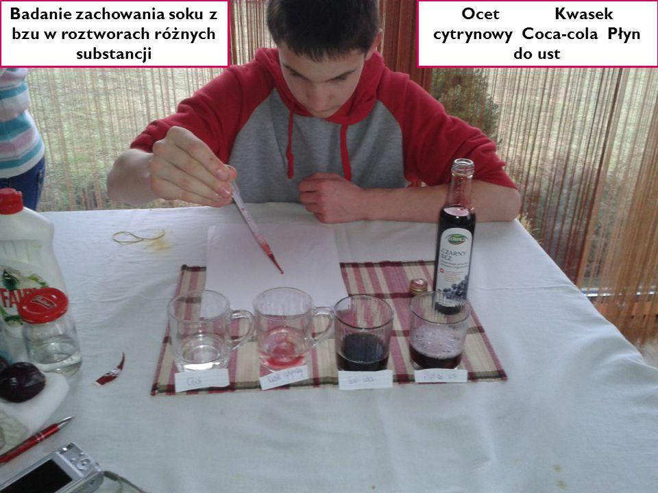 Ocet Kwasek cytrynowy Coca-cola Płyn do ust Badanie zachowania soku z bzu w roztworach różnych substancji