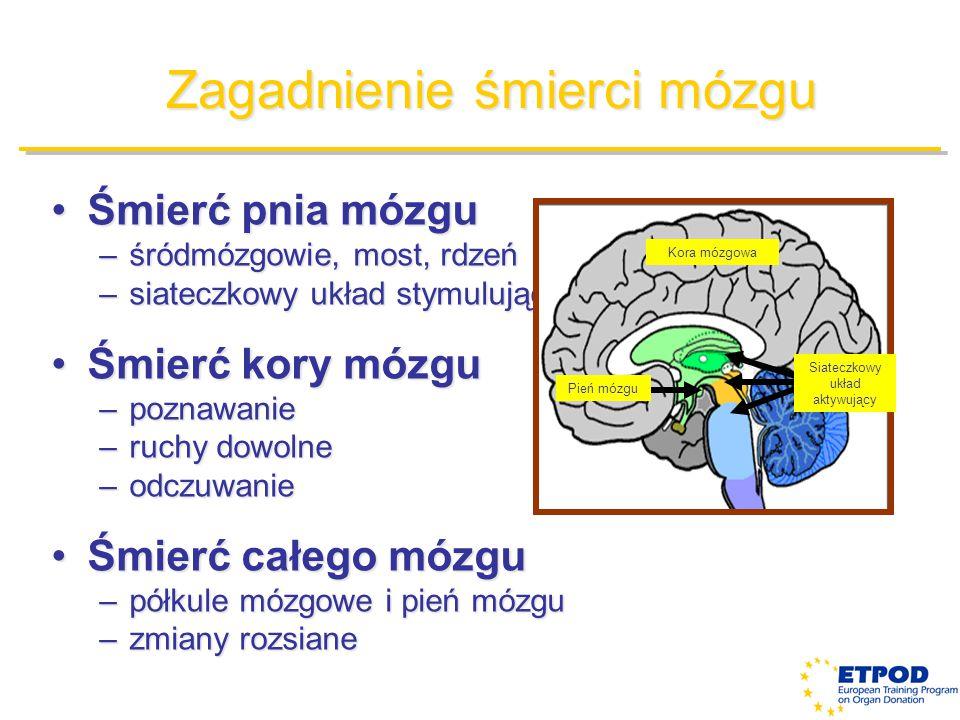 Zagadnienie śmierci mózgu Śmierć pnia mózguŚmierć pnia mózgu –śródmózgowie, most, rdzeń –siateczkowy układ stymulujący Śmierć kory mózguŚmierć kory mó