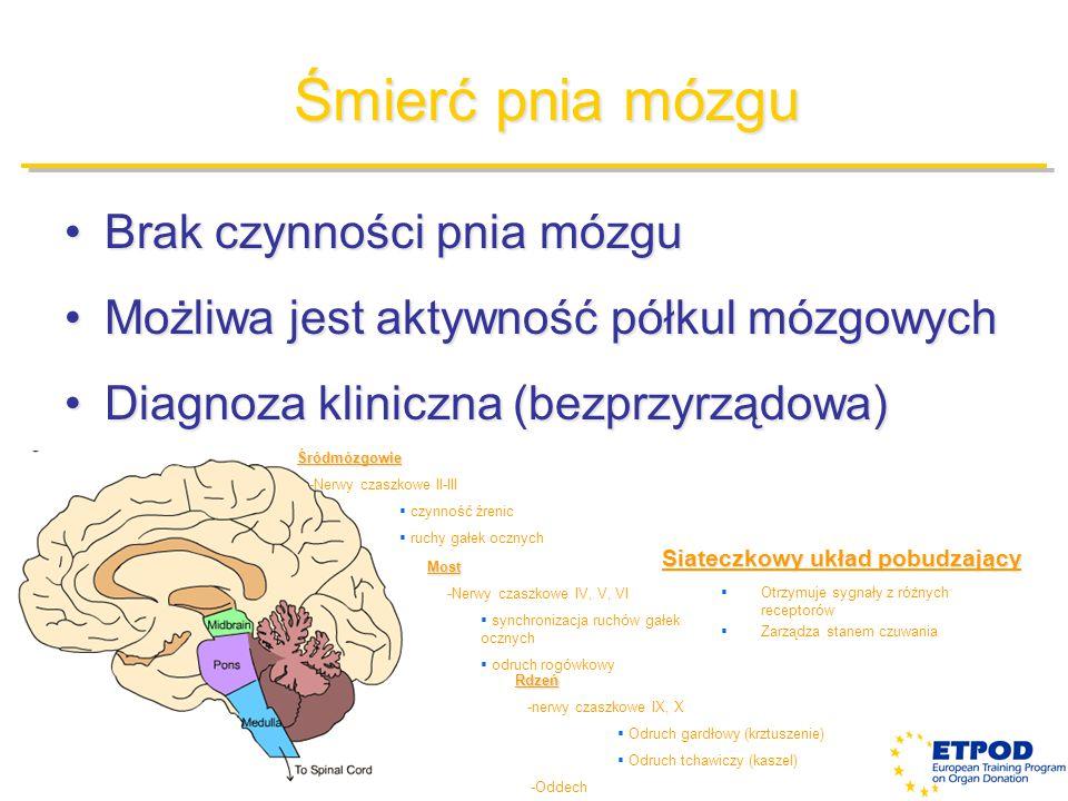 Śmierć pnia mózgu Brak czynności pnia mózguBrak czynności pnia mózgu Możliwa jest aktywność półkul mózgowychMożliwa jest aktywność półkul mózgowych Di