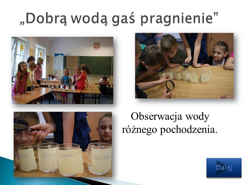 Obserwacja wody różnego pochodzenia.