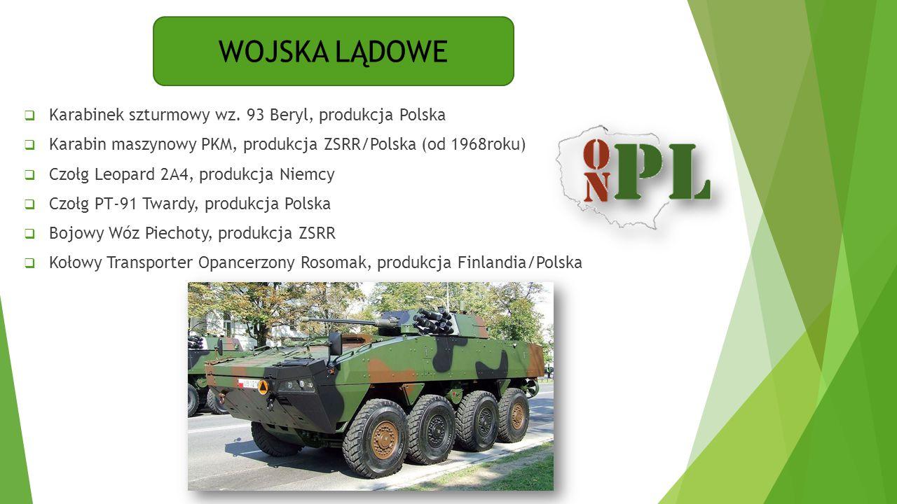 WOJSKA LĄDOWE  Karabinek szturmowy wz. 93 Beryl, produkcja Polska  Karabin maszynowy PKM, produkcja ZSRR/Polska (od 1968roku)  Czołg Leopard 2A4, p