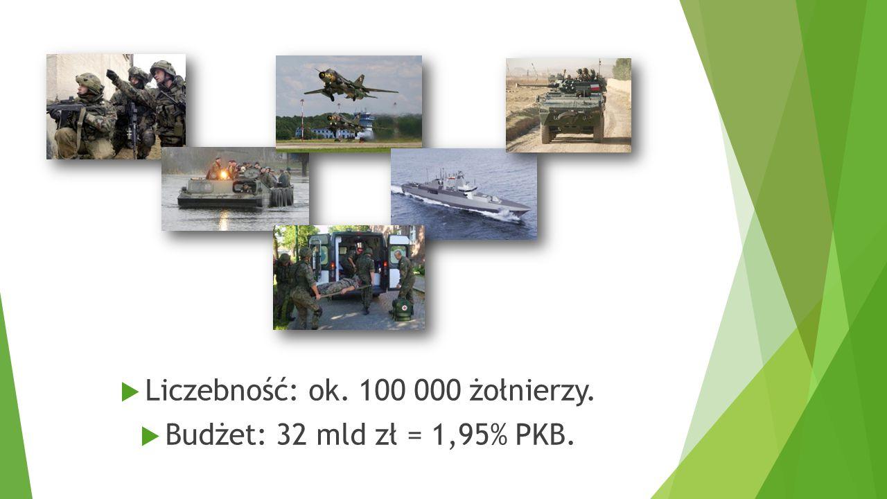  Liczebność: ok. 100 000 żołnierzy.  Budżet: 32 mld zł = 1,95% PKB.