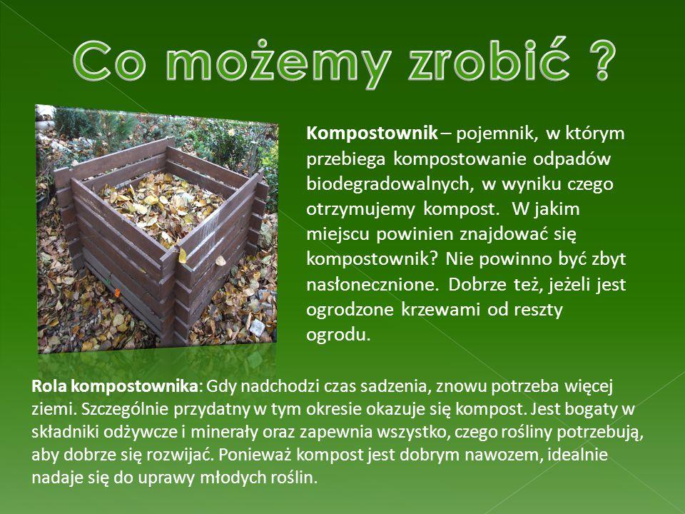 Kompostownik – pojemnik, w którym przebiega kompostowanie odpadów biodegradowalnych, w wyniku czego otrzymujemy kompost. W jakim miejscu powinien znaj