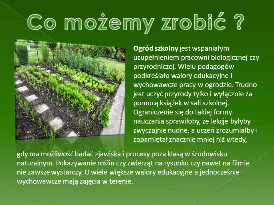 Ogród szkolny jest wspaniałym uzupełnieniem pracowni biologicznej czy przyrodniczej. Wielu pedagogów podkreślało walory edukacyjne i wychowawcze pracy