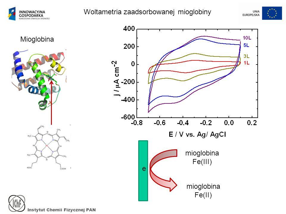 Instytut Chemii Fizycznej PAN Woltametria zaadsorbowanej mioglobiny Mioglobina mioglobina Fe(III) mioglobina Fe(II) e
