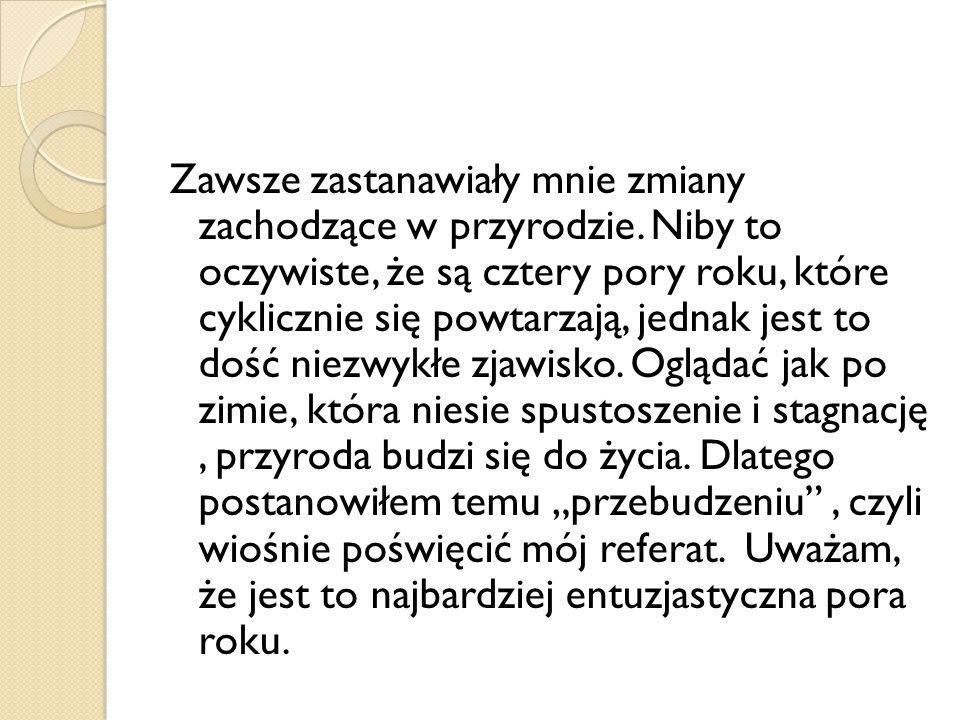 Źródła: https://dariuszkwasniewski.wordpress.com/2013 /02/21/jestem-polakiem-wiec-kocham-jezyk- polski/ https://dariuszkwasniewski.wordpress.com/2013 /02/21/jestem-polakiem-wiec-kocham-jezyk- polski/ http://pl.wikipedia.org/wiki/Wiosna http://plfoto.com/zdjecie,zwierzeta,wiosenne- przebudzenie,2418201.html http://plfoto.com/zdjecie,zwierzeta,wiosenne- przebudzenie,2418201.html gif.toutimages.com smayli.ru www.wiocha.pl msp12piekary.edupage.org http://uroczystosci.wieszjak.polki.pl/biesiadne- madrosci/225717,Przyslowia-o-wiosnie.html http://uroczystosci.wieszjak.polki.pl/biesiadne- madrosci/225717,Przyslowia-o-wiosnie.html
