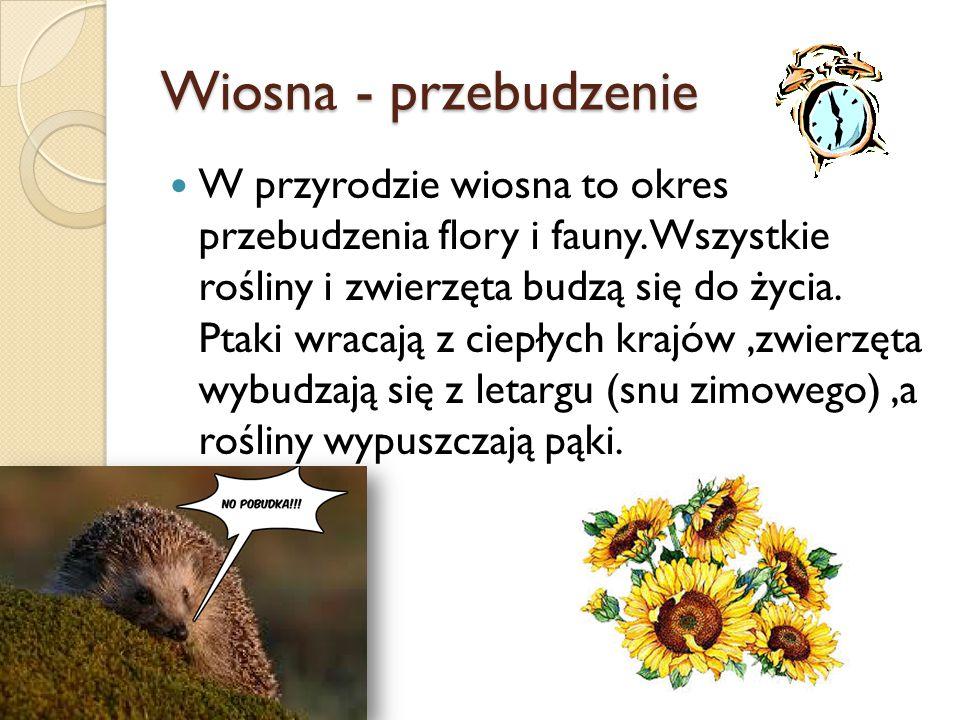 Wiosna - przebudzenie W przyrodzie wiosna to okres przebudzenia flory i fauny.