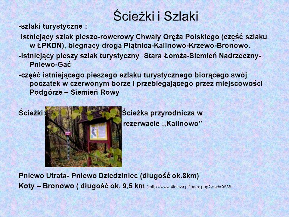 -szlaki turystyczne : Istniejący szlak pieszo-rowerowy Chwały Oręża Polskiego (część szlaku w ŁPKDN), biegnący drogą Piątnica-Kalinowo-Krzewo-Bronowo.