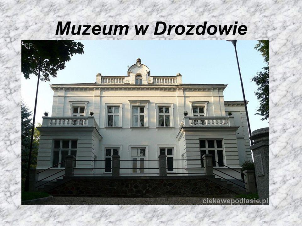 I jego wystawy http://historialomzy.pl/muzeum-przyrody-w-drozdowie /