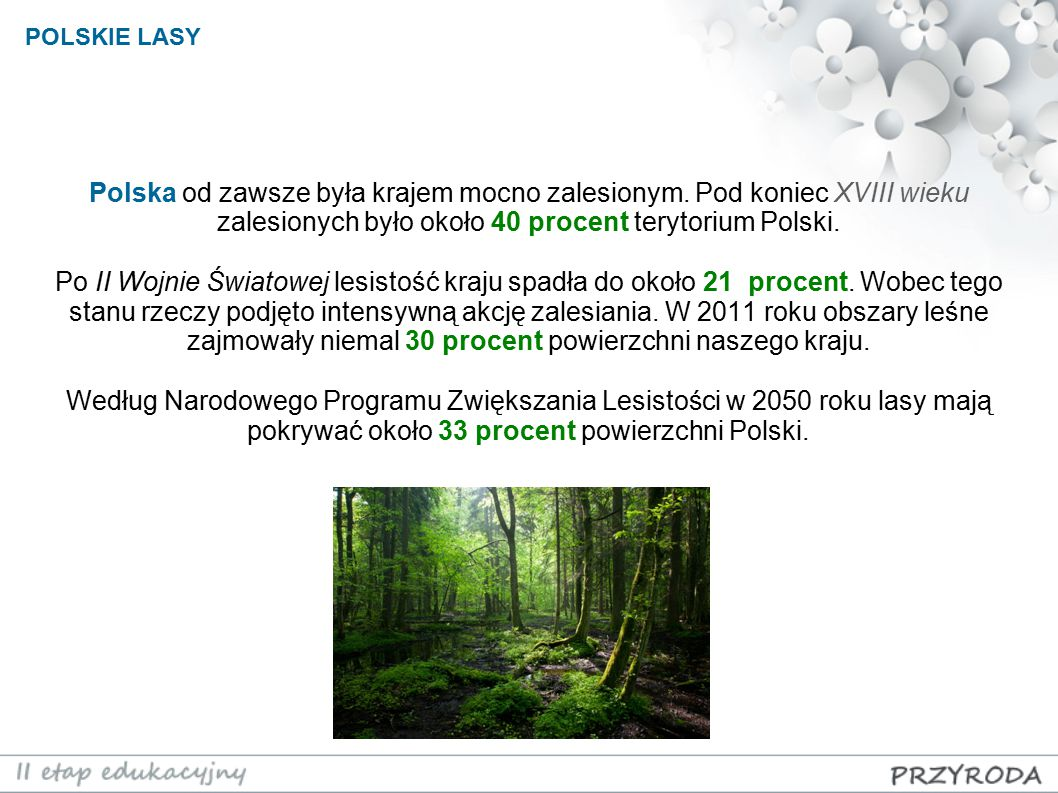 Polska od zawsze była krajem mocno zalesionym. Pod koniec XVIII wieku zalesionych było około 40 procent terytorium Polski. Po II Wojnie Światowej lesi