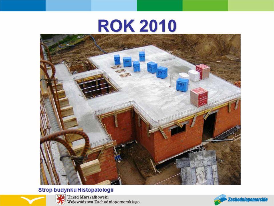 ROK 2010 Strop budynku Histopatologii