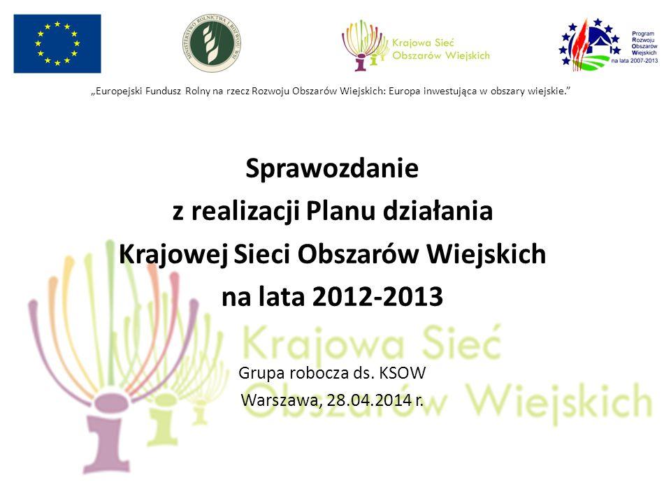 Sprawozdanie z realizacji Planu działania Krajowej Sieci Obszarów Wiejskich na lata 2012-2013 Grupa robocza ds.