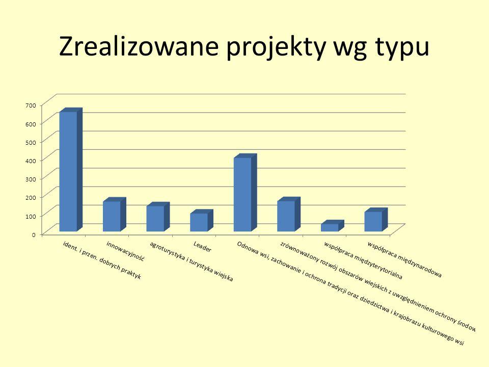 Zrealizowane projekty wg typu