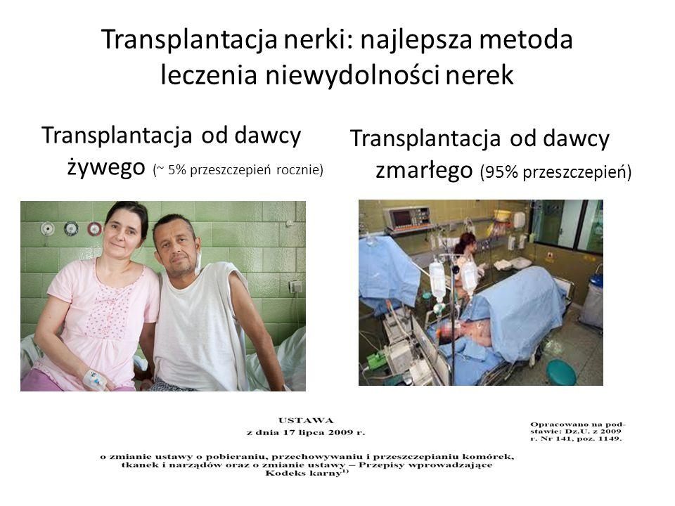 Transplantacja nerki: najlepsza metoda leczenia niewydolności nerek Transplantacja od dawcy żywego (~ 5% przeszczepień rocznie) Transplantacja od dawcy zmarłego (95% przeszczepień)