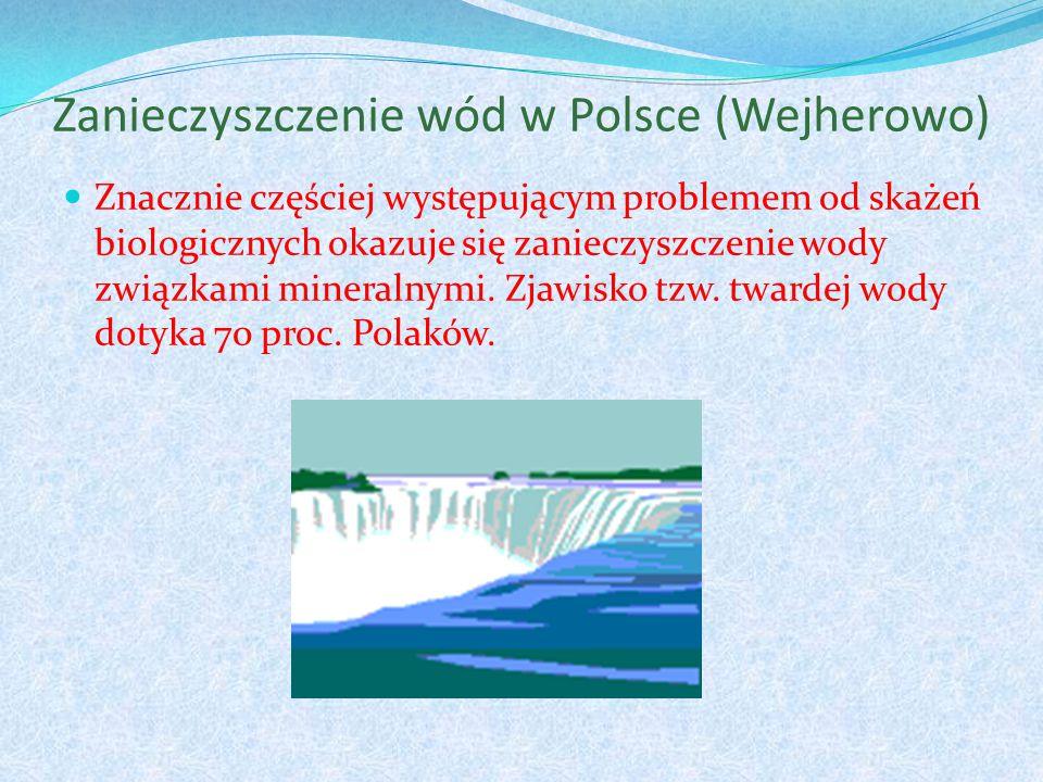 Zanieczyszczenie wód w Polsce (Wejherowo) Znacznie częściej występującym problemem od skażeń biologicznych okazuje się zanieczyszczenie wody związkami mineralnymi.