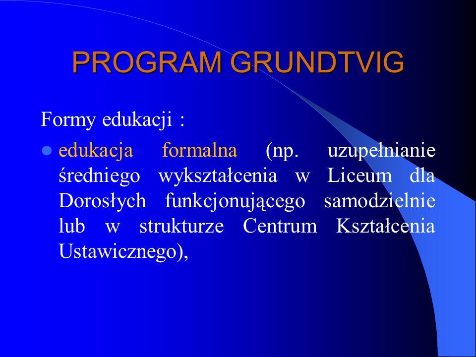 PROGRAM GRUNDTVIG Formy edukacji : edukacja formalna (np.