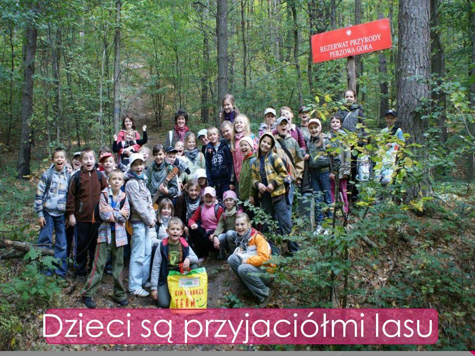 Dzieci są przyjaciółmi lasu