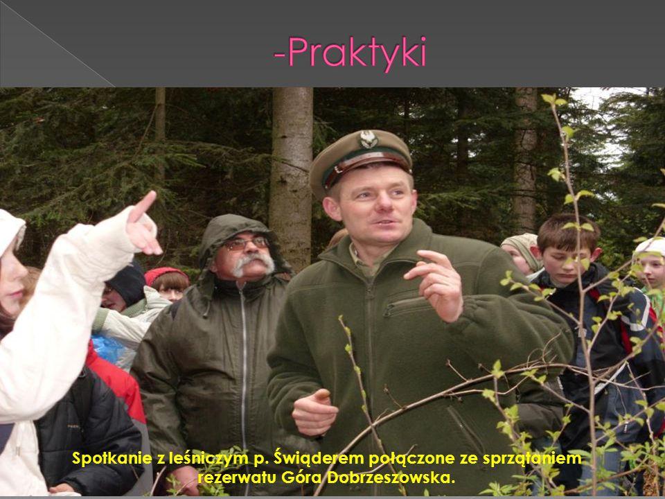 Nauka rozpoznawania leśnych roślin