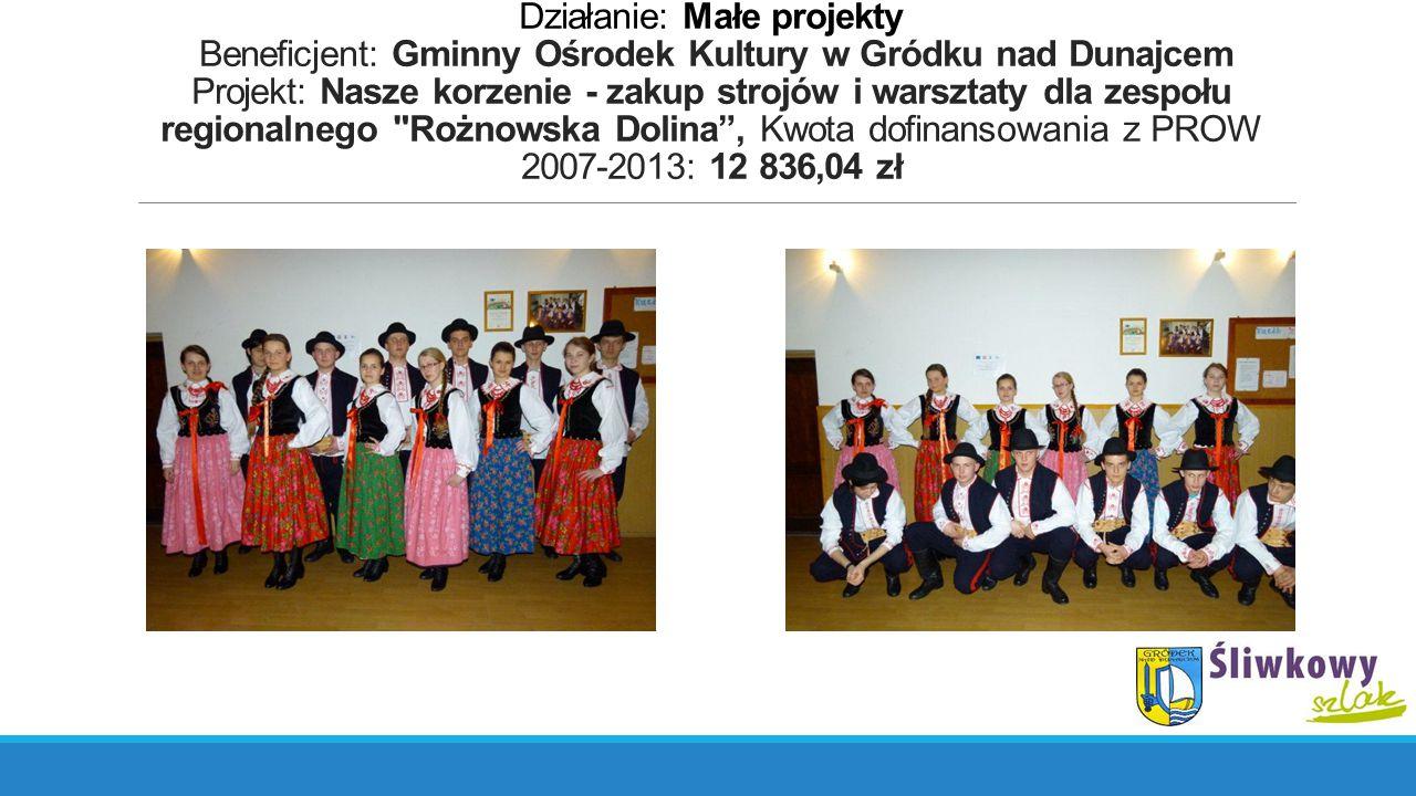 Działanie: Małe projekty Beneficjent: Gminny Ośrodek Kultury w Gródku nad Dunajcem Projekt: Nasze korzenie - zakup strojów i warsztaty dla zespołu reg