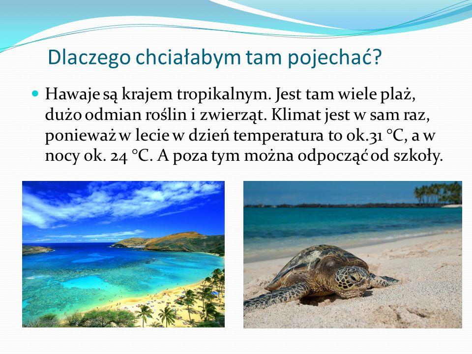 Dlaczego chciałabym tam pojechać? Hawaje są krajem tropikalnym. Jest tam wiele plaż, dużo odmian roślin i zwierząt. Klimat jest w sam raz, ponieważ w