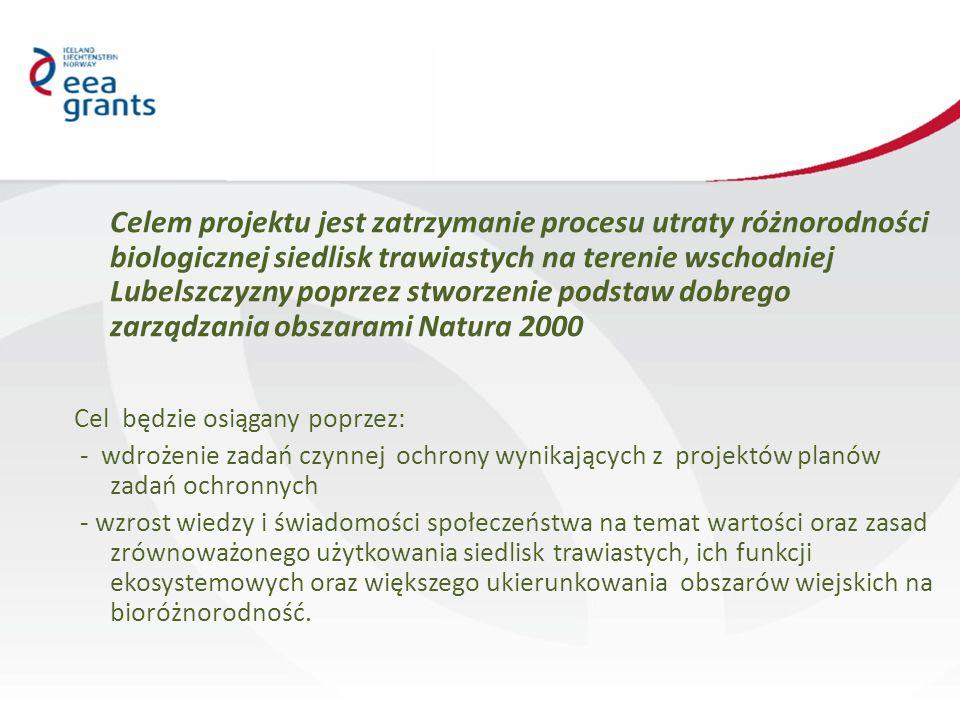 Celem projektu jest zatrzymanie procesu utraty różnorodności biologicznej siedlisk trawiastych na terenie wschodniej Lubelszczyzny poprzez stworzenie podstaw dobrego zarządzania obszarami Natura 2000 Cel będzie osiągany poprzez: - wdrożenie zadań czynnej ochrony wynikających z projektów planów zadań ochronnych - wzrost wiedzy i świadomości społeczeństwa na temat wartości oraz zasad zrównoważonego użytkowania siedlisk trawiastych, ich funkcji ekosystemowych oraz większego ukierunkowania obszarów wiejskich na bioróżnorodność.
