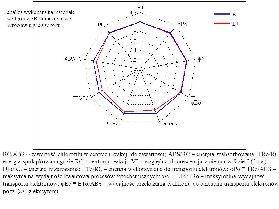 RC/ABS ~ zawartość chlorofilu w centrach reakcji do zawartości; ABS/RC – energia zaabsorbowana; TRo/RC energia spułapkowana;gdzie RC – centrum reakcji; VJ – względna fluorescencja zmienna w fazie J (2 ms); DIo/RC – energia rozproszona; ETo/RC – energia wykorzystana do transportu elektronów; φPo ≡ TRo/ABS – maksymalna wydajność kwantowa procesów fotochemicznych; ψo ≡ ETo/TRo – maksymalna wydajność transportu elektronów; φEo ≡ ETo/ABS – wydajność przekazania elektronu do łańcucha transportu elektronów poza QA- z ekscytonu analiza wykonana na materiale w Ogrodzie Botanicznym we Wrocławiu w 2007 roku φPo ψo φEo E- E+