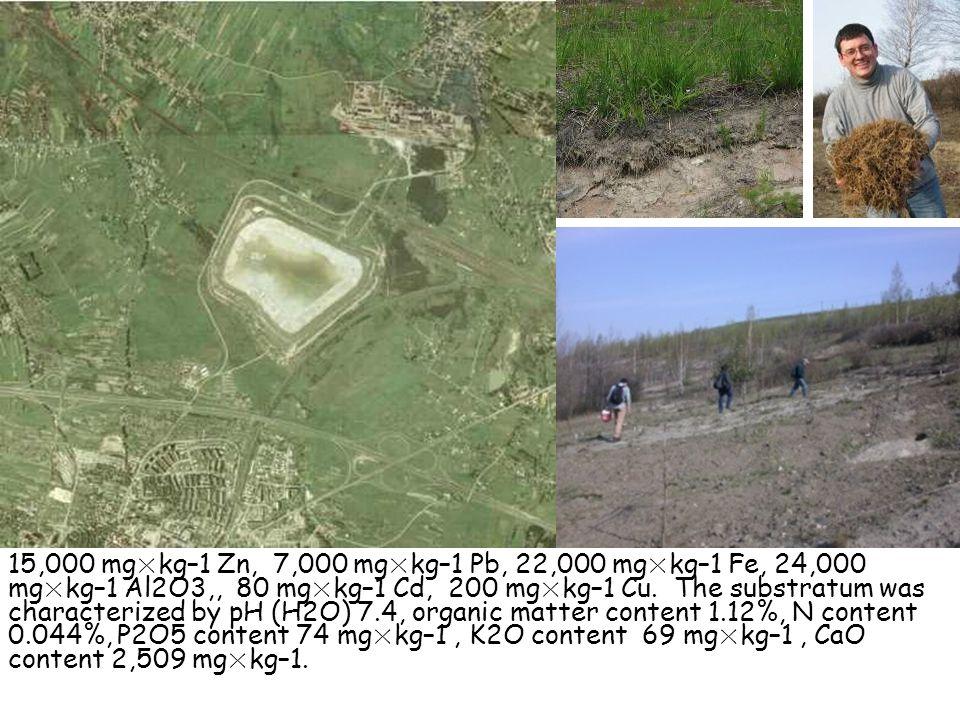 15,000 mg×kg–1 Zn, 7,000 mg×kg–1 Pb, 22,000 mg×kg–1 Fe, 24,000 mg×kg–1 Al2O3,, 80 mg×kg–1 Cd, 200 mg×kg–1 Cu.