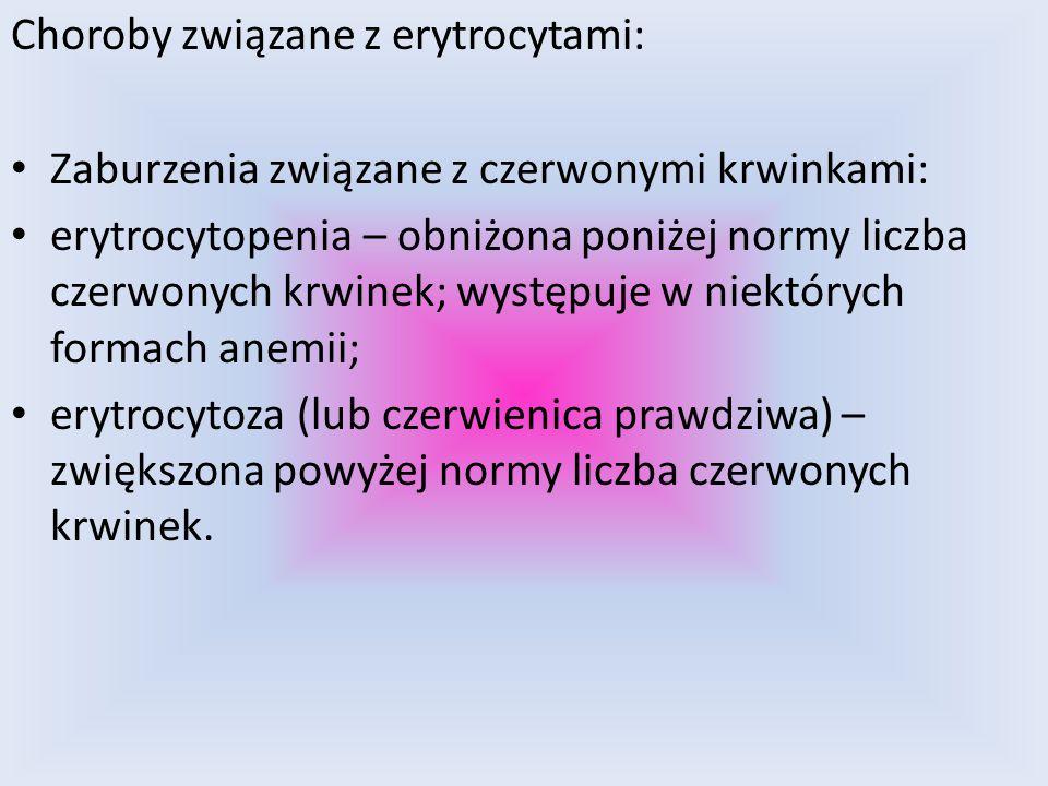 TWORZYLI Grupa 5 Adam Sadlok Bartek Kusiak Kamil Woźniak